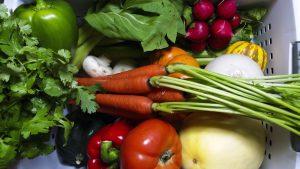 vegetable-medly