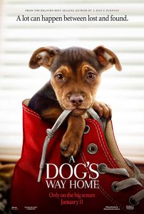 "movie image ""A dog's way home"""