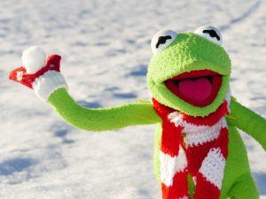 Kermit throwing snowball