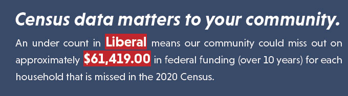 Census data matters