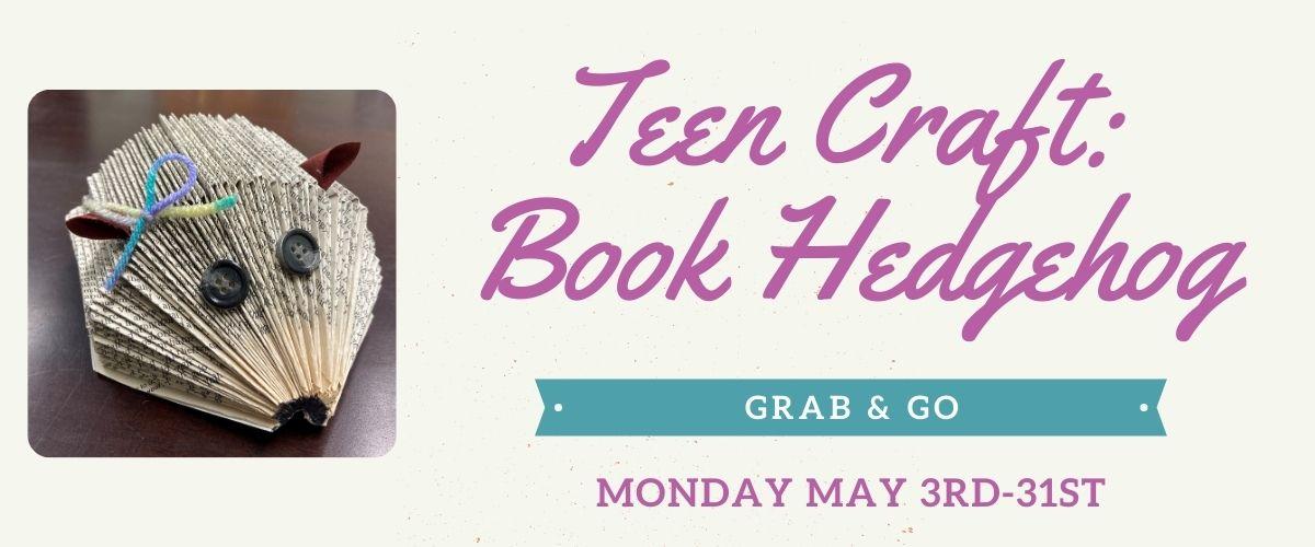 May 2021 Teen Grab & Go Craft