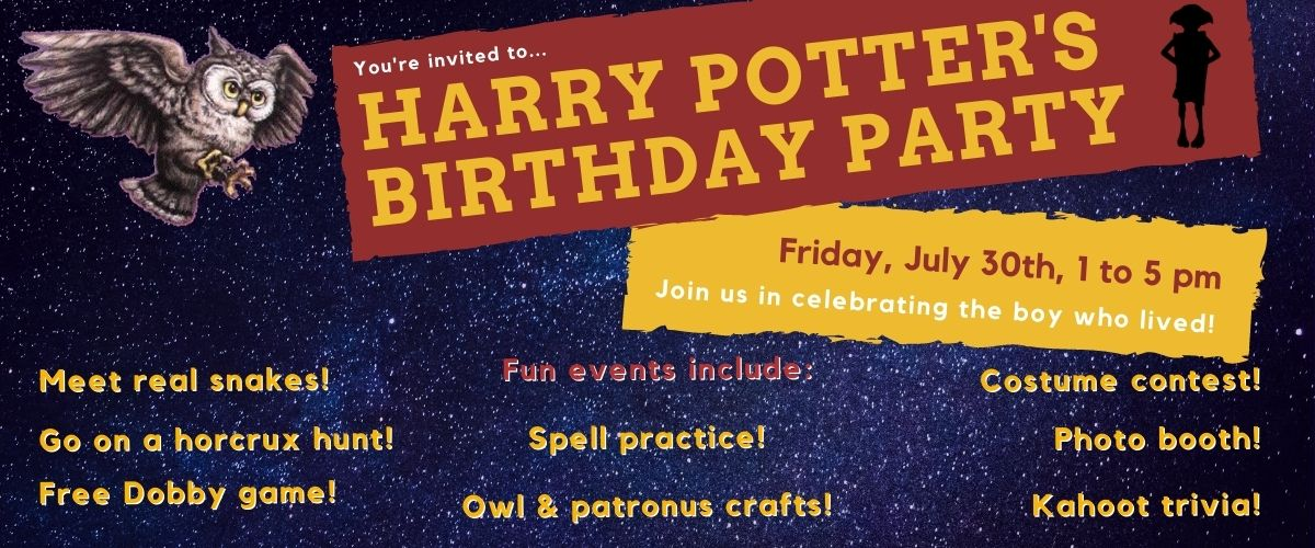 2021 Harry potter's birthday party